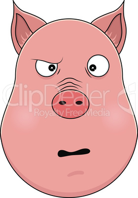Head of confused pig in cartoon style. Kawaii animal.