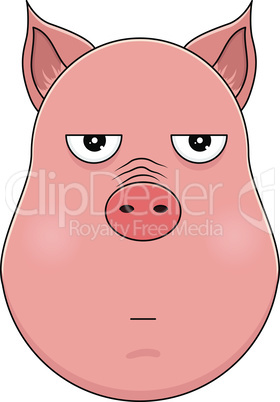 Head of annoyed pig in cartoon style. Kawaii animal.