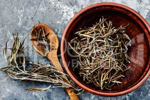 Rosemary spice herb