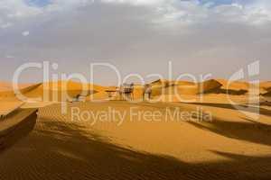 In the dunes of Erg Chebbi near Merzouga in southeastern Morocco.