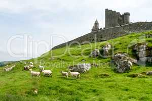 The Rock of Cashel, County Tipperary in Ireland.
