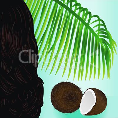Coconut tropical nut fruit palm leaf and beauty girl hair vector illustration