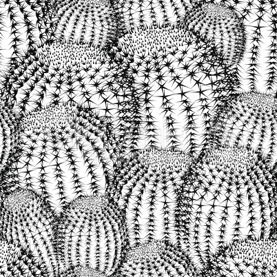 cactus pattern texture mexican close saguaro sharp tile travel vector cacti plant seamless background prickly pear close up.