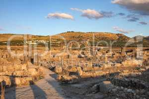 Ruins of the roman basilica of Volubilis near Meknes and Fez, Morocco