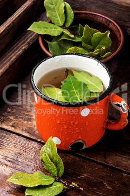 Cup of herbal tea with bay leaf