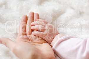Baby and mothers hands isolated on white