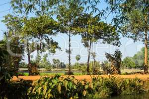 Beautiful Countryside trip in tropical rural district, Siem Reap, Cambodia