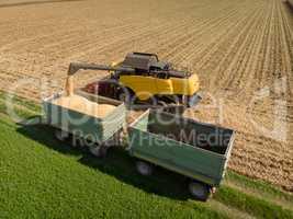 Maisernter schüttet Ernte auf Anhänger