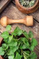 Nettle leaves on rustic background