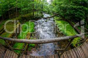 Forest with river, wooden bridge and hut