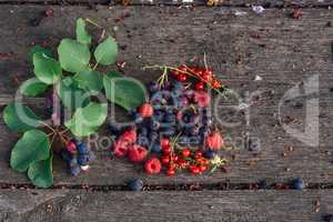 Ripe shadberry, redcurrant, raspberry with branch scattered on wooden table