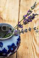 lavender in a stylish glass vase