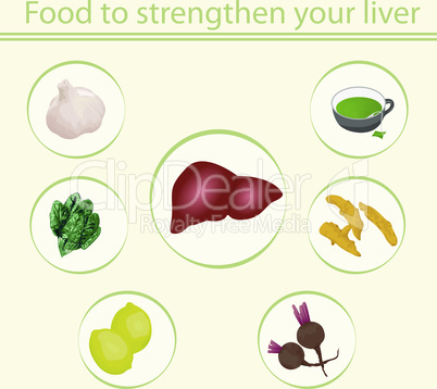 Food to strengthen your liver vector  infographics