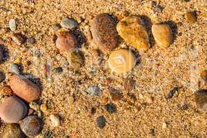pebble stone on a beach