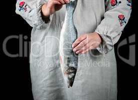 woman in gray linen clothes holding a fresh sea bass fish