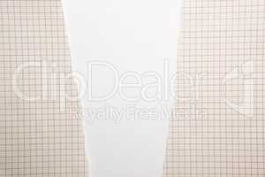 yellow torn sheet of paper in a cell on a white background