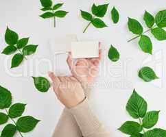 female hand holding a stack of white empty paper business cards