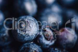 Blueberry Close Up Background