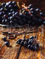 Blue Vine Grapes on wooden surface