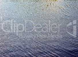 ripple on water in city park pond at day