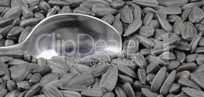 sunflower seeds background and teaspoon