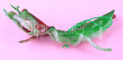 mantis toy on pink background at day