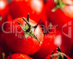 Cherry Tomatoes Background