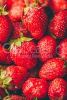 Background of ripe strawberries