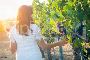 Young Adult Woman with Glass of Wine Tasting Walking in The Vineyard