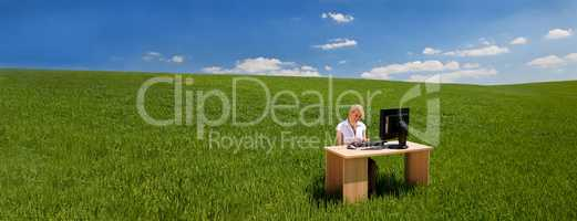Panorama Businesswoman Using Computer at a Desk In Green Field B