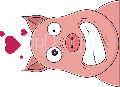 Head of pig looking hysterical with hearts over head.