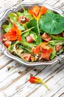 Salad with vegetables and nasturtium