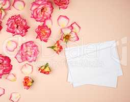 yellow rose buds and a white paper envelope on a peach backgroun