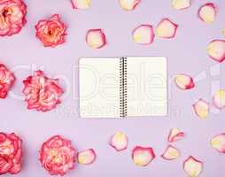 open notebook with white blank pages on a purple background