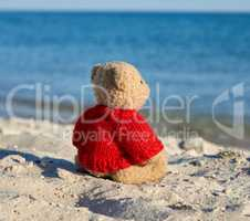 brown teddy bear in a red sweater stands on the sandy seashore a