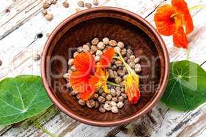 Nasturtium officinale with seeds