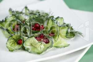 Cucumber and Pomegranate Salad