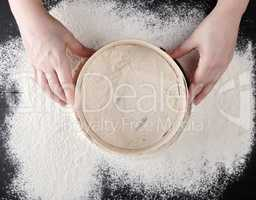 women's hands hold a round wooden sieve and sift white wheat flo
