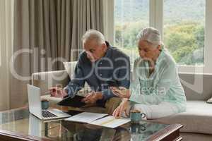 Active senior couple calculating bills in living room