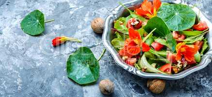 Salad with flowers of nasturtium