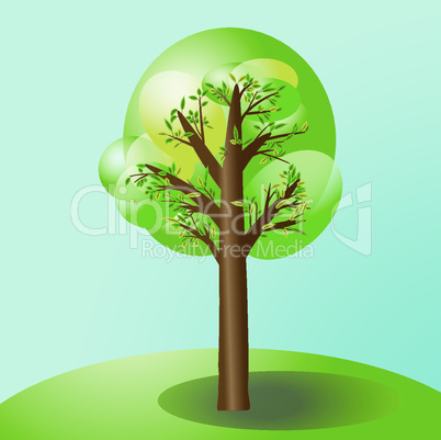 Tree with tree leaves color