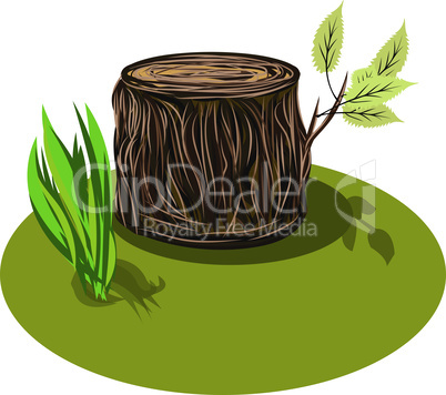Vector Illustration of a cartoon big tree stump with bench, leaves and some blades of grass. Tree Stump.