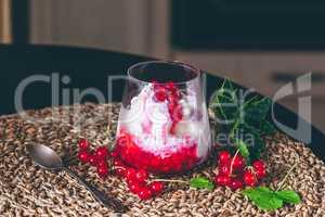 Ice Cream Dessert with Red Currant.