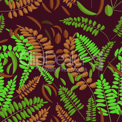Seamless pattern with green and ginger acacia leaf on bordo background. Vector texture autumn acacia decoration and interior
