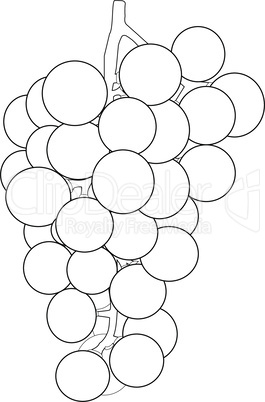 Outlines of a bunch of grapes
