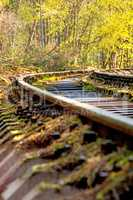 rails out of order in a forest in Poland, deep angle
