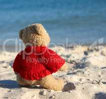 brown teddy bear in a red sweater