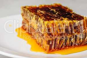 Delicious honeycomb on light background