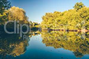 Autumn forest with reflection on water surface