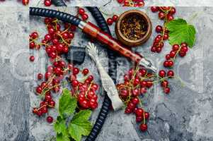 Shisha hookah with red currant